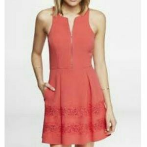 Express Fit & Flare Dress